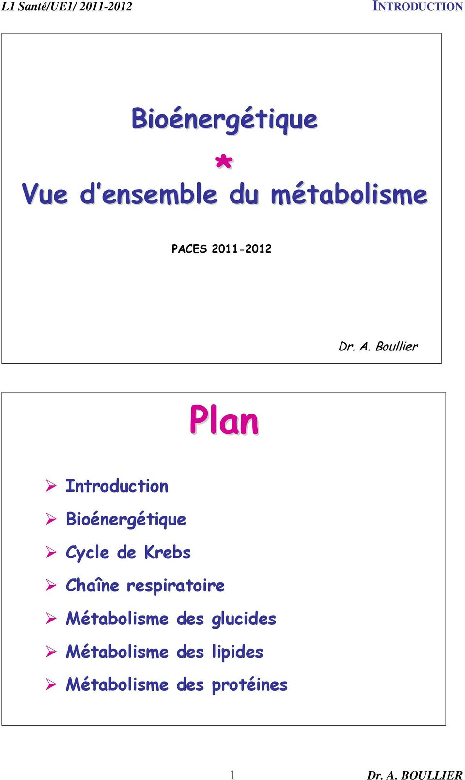 Boullier Plan Introduction Bioénergétique Cycle de Krebs