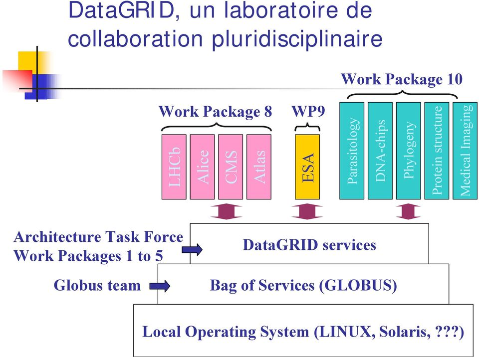 structure Medical Imaging Architecture Task Force Work Packages 1 to 5 Globus team