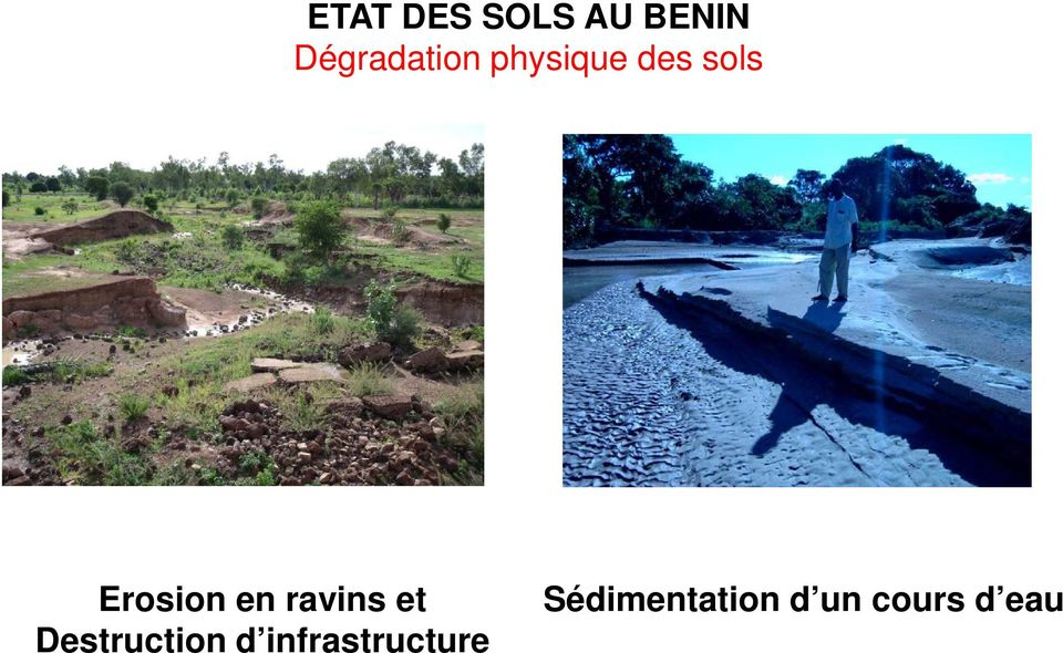 Erosion en ravins et Destruction