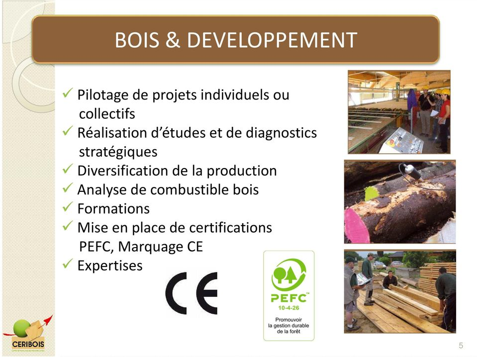 Diversification de la production Analyse de combustible bois