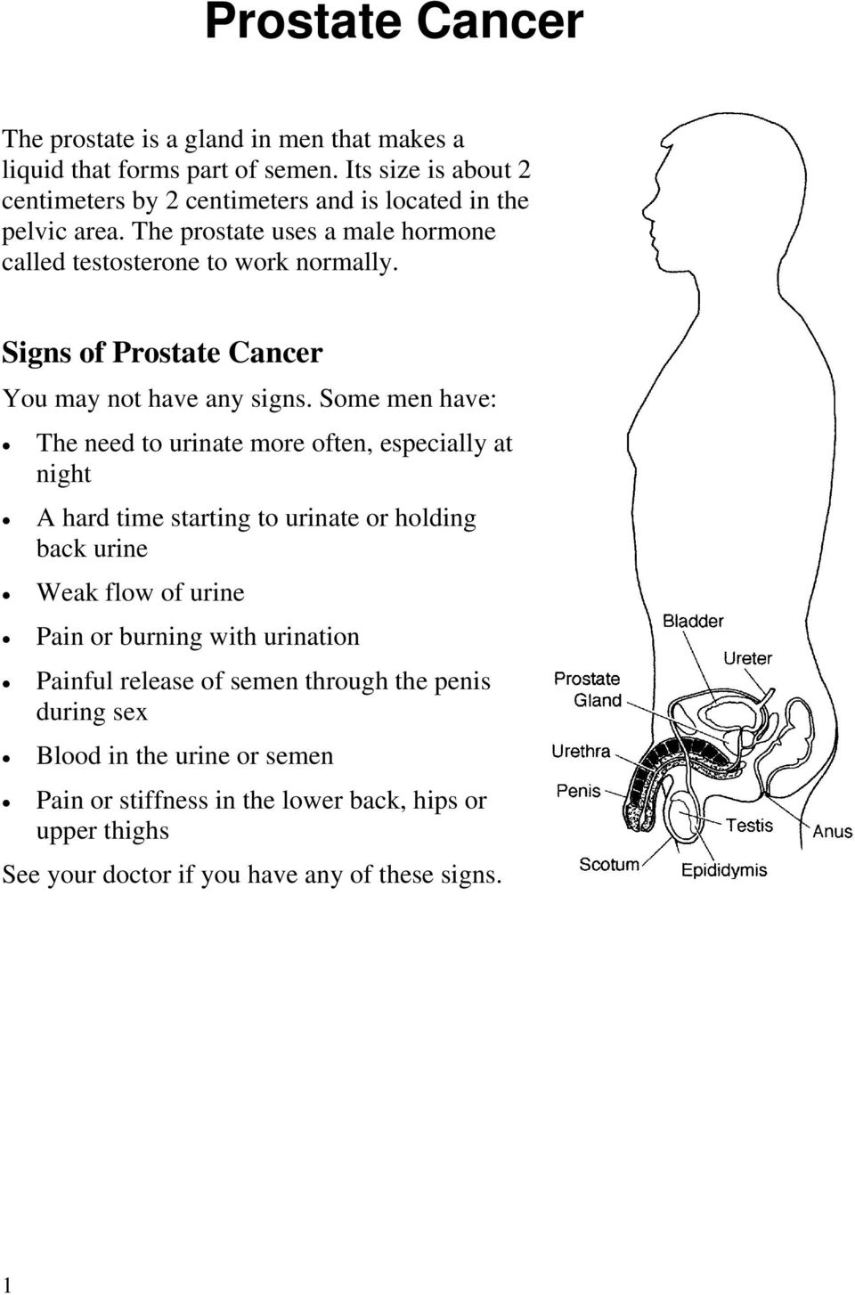 Signs of Prostate Cancer You may not have any signs.