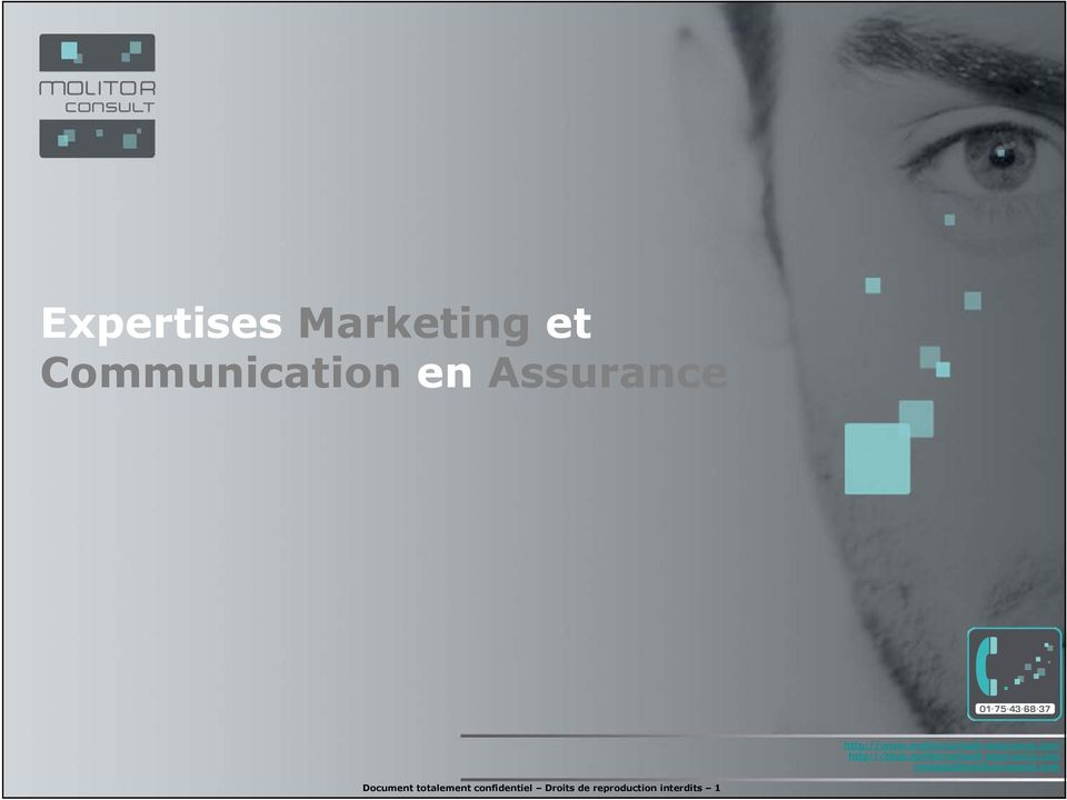 molitorconsult-assurance.com contacts@molitorconsult.