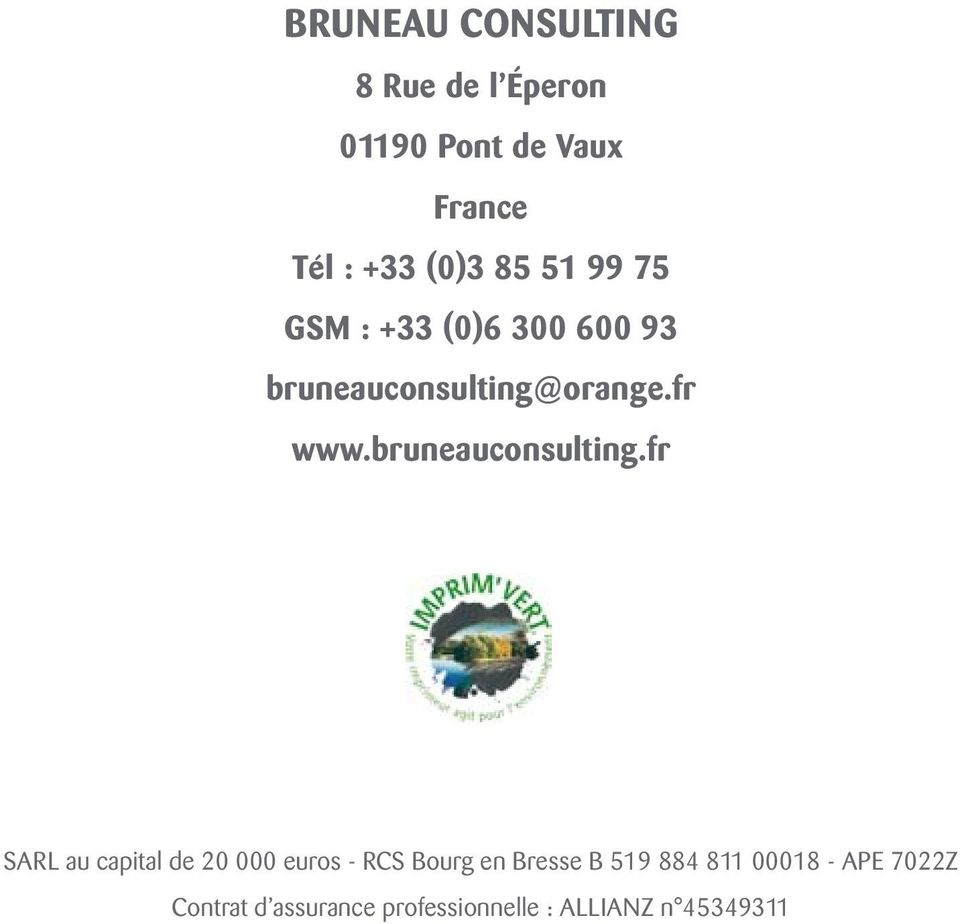 bruneauconsulting.