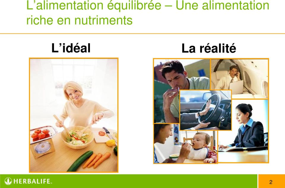 alimentation riche