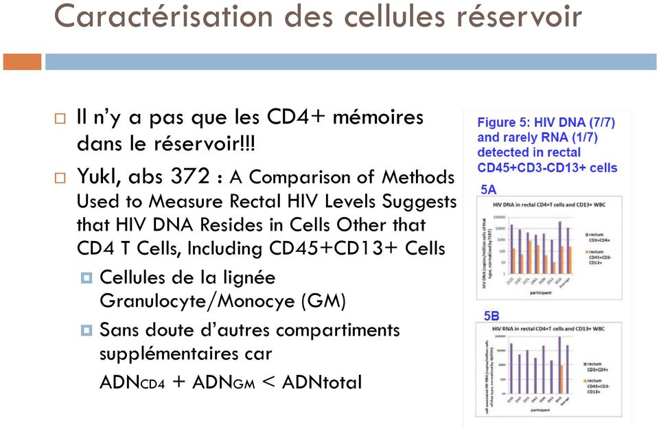 DNA Resides in Cells Other that CD4 T Cells, Including CD45+CD13+ Cells Cellules de la lignée