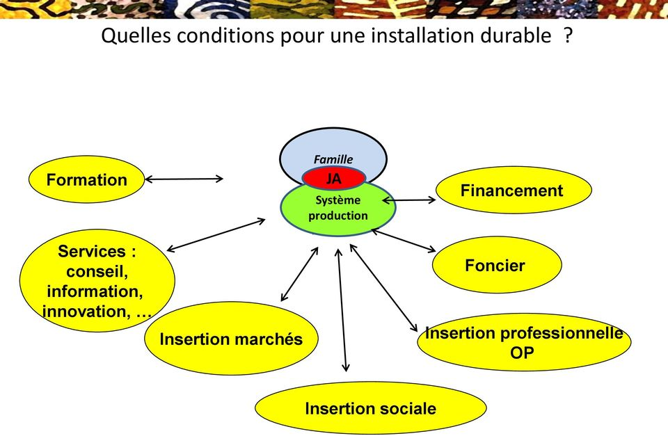 Services : conseil, information, innovation, Insertion