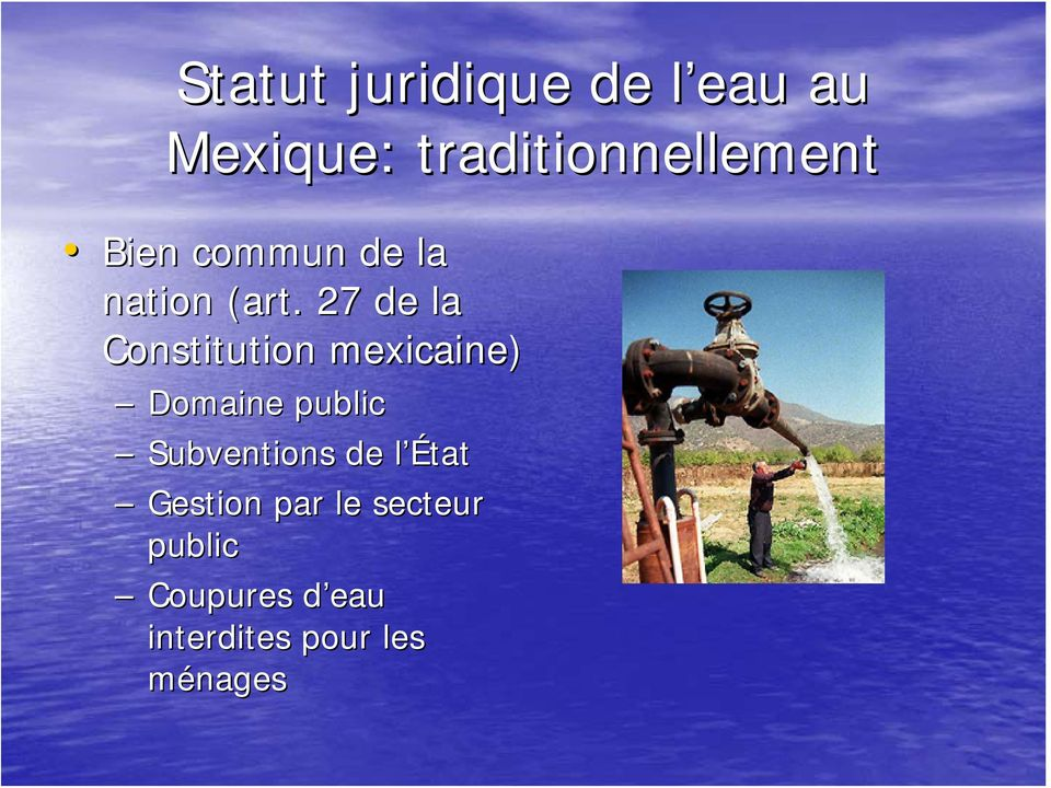27 de la Constitution mexicaine) Domaine public Subventions