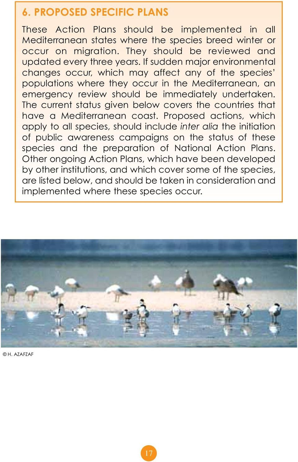 If sudden major environmental changes occur, which may affect any of the species populations where they occur in the Mediterranean, an emergency review should be immediately undertaken.