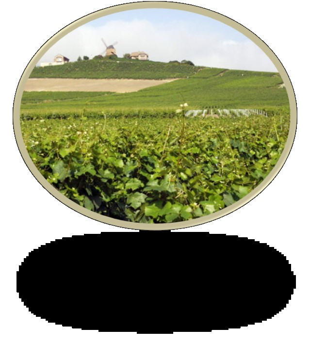 Sommaire Analyse globale Champagne-Ardenne