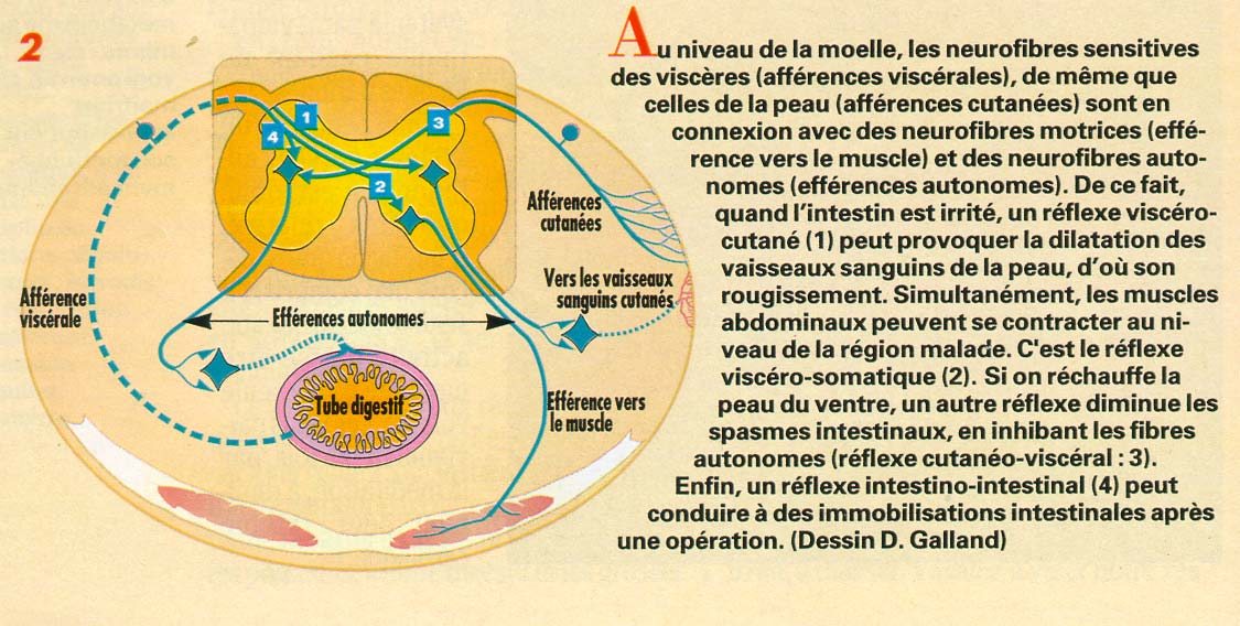 IV- Exemple d interaction