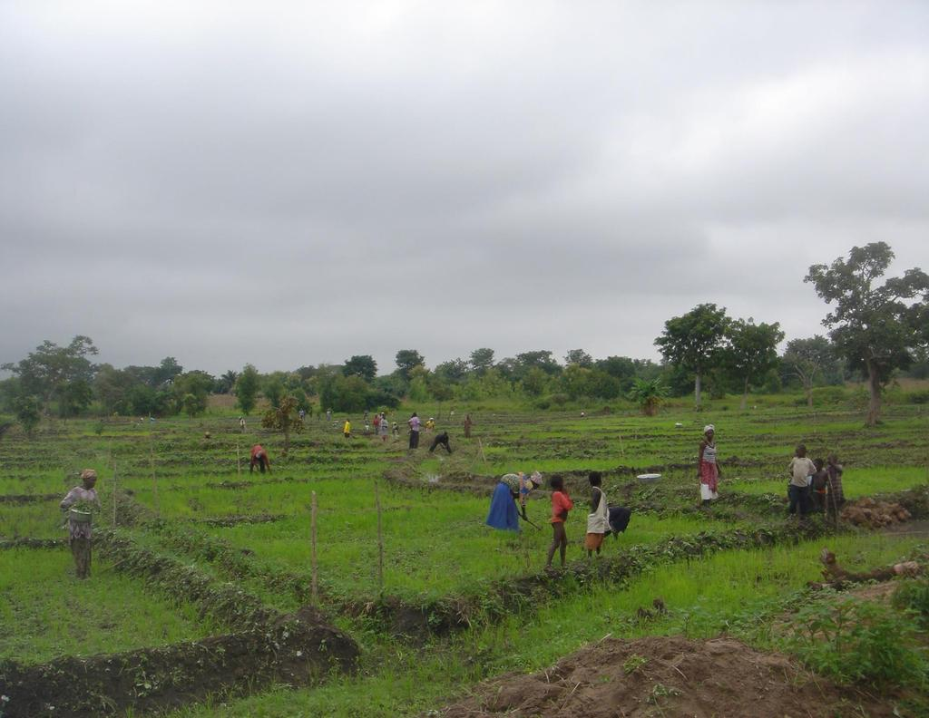 Photo 3: Road-side site in Togo, Jchekounicope, a