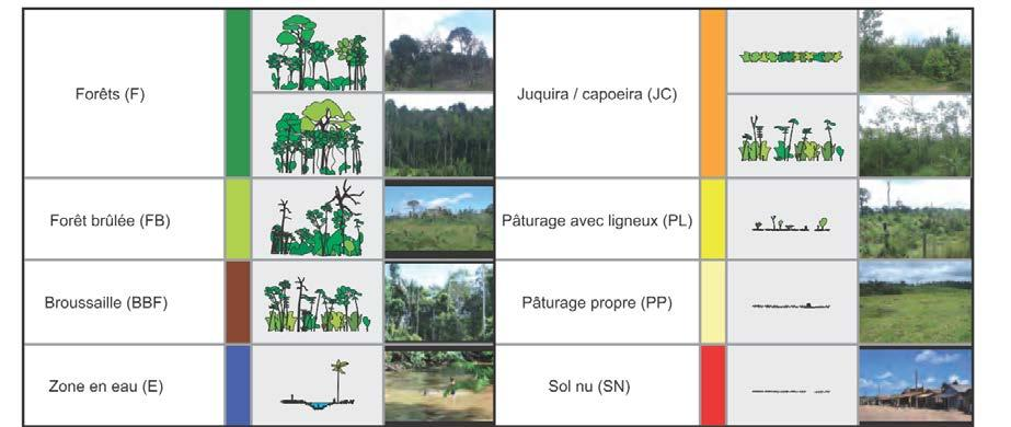 La déforestation Until recently, characterizing deforestation from satellites has focused mainly on estimating the changing areas of forest and non-forest