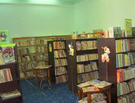 Public libraries the librarian in charge with guiding children s reading should be focused on the