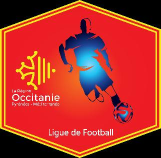 REGLEMENT DU CHAMPIONNAT FUTSAL LIGUE D OCCITANIE DE FOOTBALL Article 1.