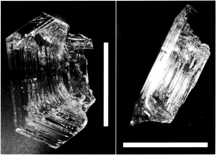 FIGURE 6. Optical microscopy pictures of a cup-shaped depth hoar crystal from sample 4. The same crystal is shown from two different angles.