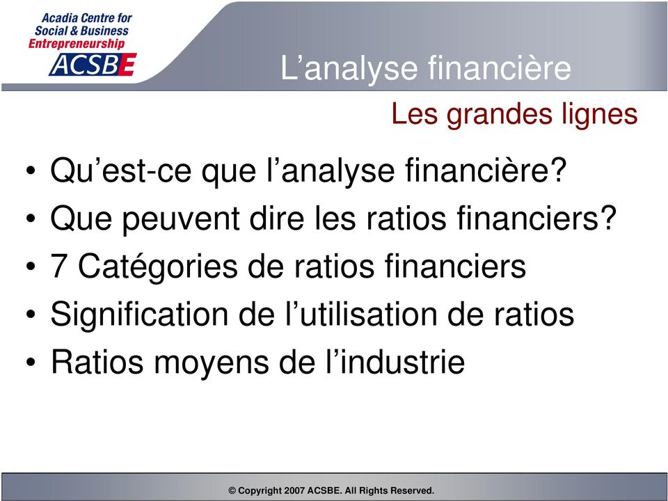 Que peuvent dire les ratios financiers?