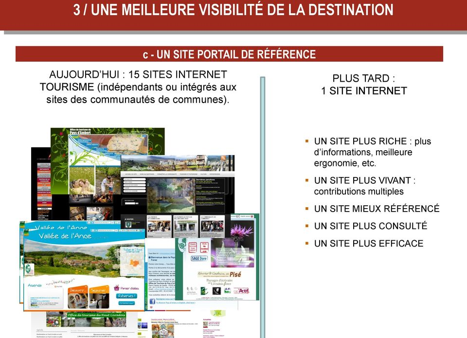 PLUS TARD : 1 SITE INTERNET UN SITE PLUS RICHE : plus d informations, meilleure ergonomie, etc.