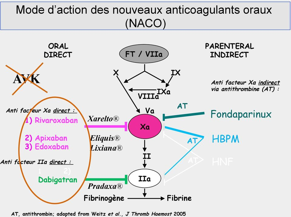 Xa Va AT Fondaparinux 2) Apixaban 3) Edoxaban Anti facteur IIa direct : 1 2) Dabigatran Eliquis Lixiana