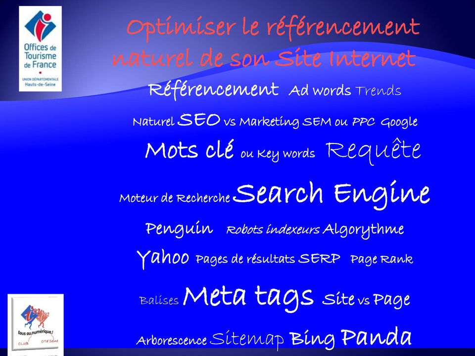 Search Engine Moteur de Recherche Penguin Robots indexeurs Algorythme Yahoo Pages