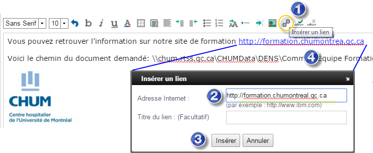 Formation courriel CHUM (Version Web de Lotus Notes) - PDF