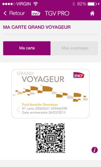 Carte Grand Voyageur Plus.L Application Tgv Pro Pdf