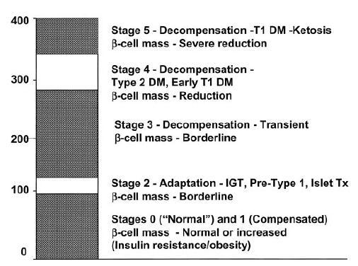 Schema of five stages of progression of diabetes. Loss of GSIS in stage 2: the glucotoxicity hypothesis.