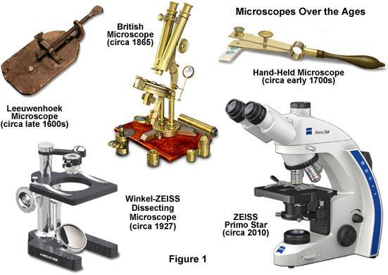 rencontres Carl Zeiss microscopes